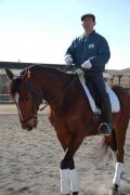 馬場馬術中級者講習会