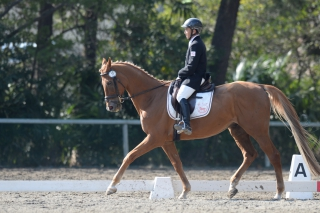 34th_Final_Dressage_Winner