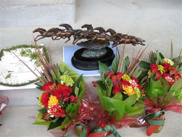 2008年アジアパシフィック馬術大会優勝トロフィ